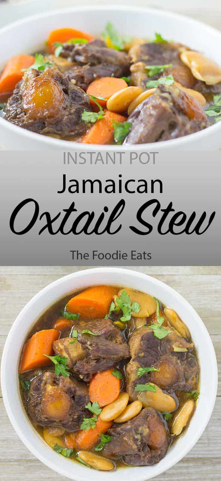 Pressure Cooker Oxtail Stew - image for Pinterest | The Foodie Eats