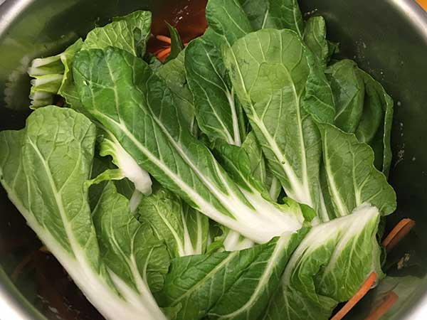 Bok choy leaves.