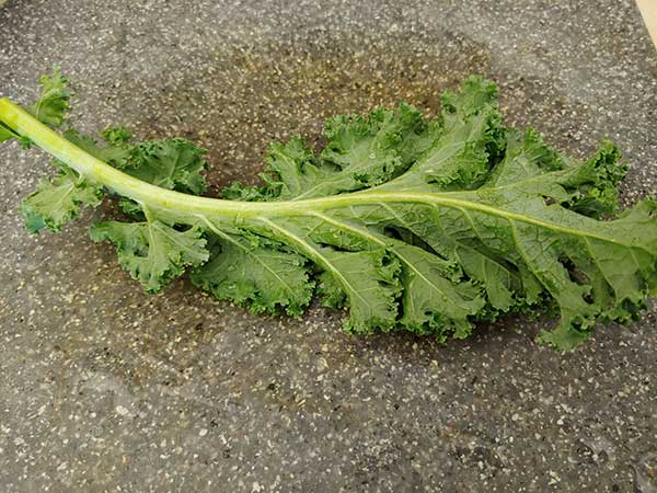 One leaf of kale on cutting board.