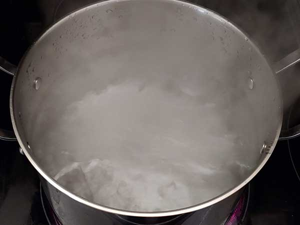 Pot of boiling water.